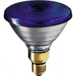 Philips Reflektor Par38 niebieski E27 80 W